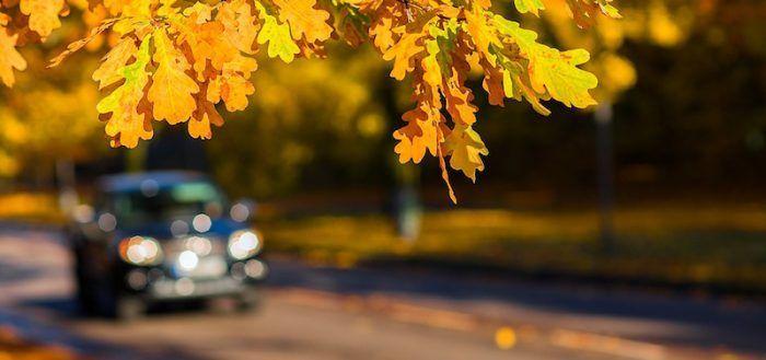 contrato-compraventa-vehiculo-eximir-vendedor-garantia